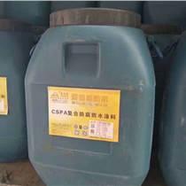全國特賣CSPA混凝土復合防腐防水涂料