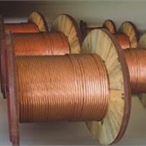 供应厂家直销铜包钢绞线