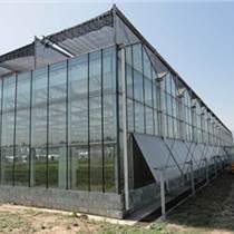 國興文洛型溫室 國興文洛PC版溫室建造