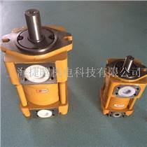 CHENGJIE內嚙合齒輪泵NT2-C20F