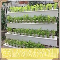 种植槽 草莓立体种植槽 无土栽培槽