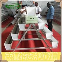 草莓種植設備 無土栽培槽 草莓基質槽廠家