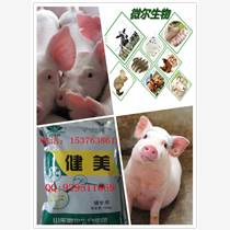 育肥猪怎样快速催肥益生菌喂猪健康育肥