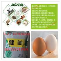 家禽专用微生物益生菌肠道健康防止过料