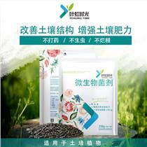 上海  微生物菌劑廠家