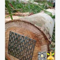 供應新伐巴西剪枝桉木,可用于木皮,板材,家具制作,建