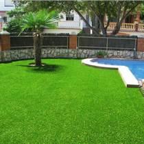 20MM加密加厚人造草皮假草幼儿园仿真草坪地毯