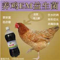 養雞益生菌對于養雞效果怎么樣