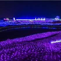 灯光秀展览活动方案 灯光展览造型制作厂家