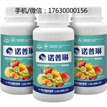 讓獼猴桃長的好的葉面肥哪些諾普琳獼猴桃抗病液肥