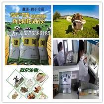 奶牛腸道益生菌粉劑拌料補充瘤胃益生菌