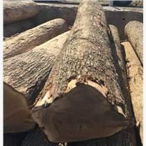 尚高木業長期供應法國等級ABC級楊木原木,新鮮砍伐材