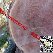 尚高木業供應新伐法國ABC級紅橡原木