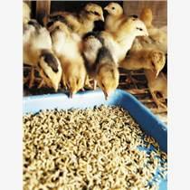 安全的鸡用饲料添加剂效果还这么好