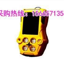 便攜式移動氨氣泄漏檢測儀 有毒氣體檢測儀