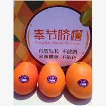 重慶奉節臍橙種植銷售有限公司