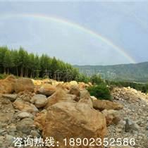 自有石山開采一手貨源,景觀石英石黃蠟石太湖石