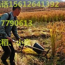 朝陽市綠化園林微型鋤草松土整套割草機手拉啟動器