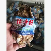 乳山生蚝价格批发,乳山海蛎子货源