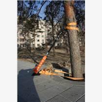 樹木矯正器,扶正器,扶正器圖片