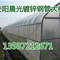 镀锌钢管蔬菜大棚薄膜