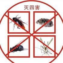 威海灭鼠公司服务、威海灭蟑螂服务、威海杀虫服务、威海