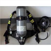 代尔塔106005空气呼吸器消防专用呼吸器