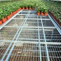 温室移动苗床信赖华耀 选材优质 售后放心
