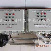 國外窯爐點火火嘴及爐膛安全裝置