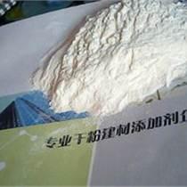 永恒強效瓷磚粘結劑專用膠粉