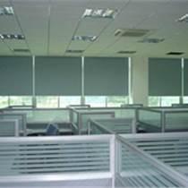 大興專業生產 辦公室窗簾 電動卷簾 純色卷簾