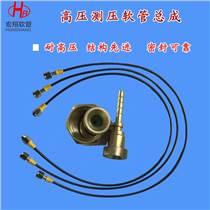 液壓機械測壓管總成 高壓樹脂測試測壓軟管油管