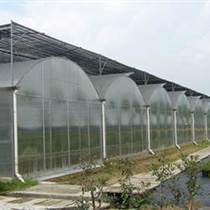 连栋薄膜温室大棚 薄膜温室大棚工程