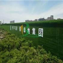 草坪墙面装饰物