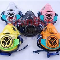 重松TW01SC防塵防毒面具面罩,