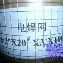 廣東電焊網廠 廣東不銹鋼電焊網 惠州抹墻電焊網廠家 