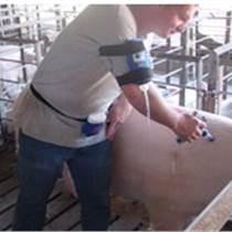 普瑞瑪連續注射器 接管式 畜禽用