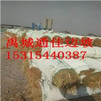 直供甘肅工程綠化用環保草毯