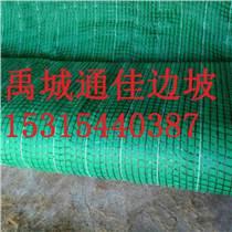 廠家專業研發鎮江抗沖生態毯  抗沖刷能力強價格低