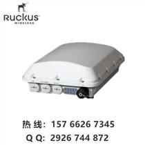 ruckus T610 優科901-T610-WW01