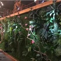 室内外立体植物墙做法 立体植物墙价格 植物墙哪家好