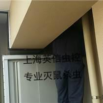 上海灭鼠秒速赛车 如何预防老鼠进入室内