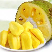 泰國菠蘿蜜進口清關代理公司