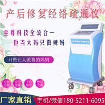 美容院產后康復治療儀器新款進口產后康復治療儀器