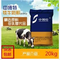 頑皮的小牛小牛一天喂多少奶粉牛羊代乳粉