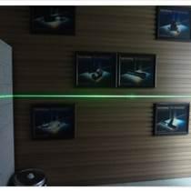 日成 RL532-20G4 綠光綠線激光儀器