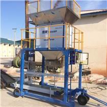黑河包裝機械自動種子灌包機