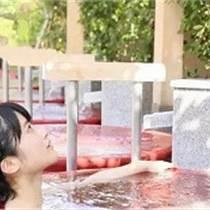 風呂掛湯洗浴大缸洗浴中心泡澡缸青瓦臺洗浴泡澡大缸廠家