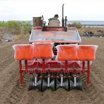 供应蔬菜栽苗机大棚蔬菜种苗通用移栽机