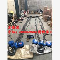 HS-Z大吨位30吨手拉葫芦-起重葫芦倒链小型设备和
